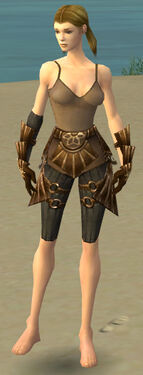 Ranger Sunspear Armor F gray arms legs front