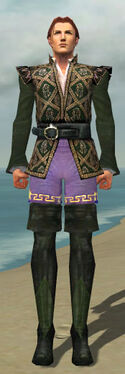Mesmer Courtly Armor M gray chest feet front