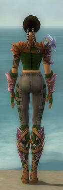 Ranger Drakescale Armor F dyed back