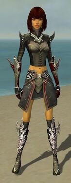 Assassin Deldrimor Armor Guildwars Wikia Fandom Powered By Wikia
