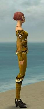 Mesmer Luxon Armor F dyed side