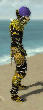 Necromancer Elite Luxon Armor M dyed side