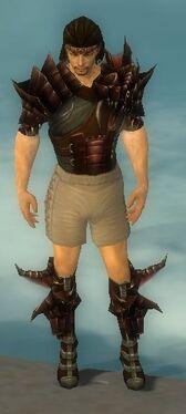 Ranger Primeval Armor M gray chest feet front