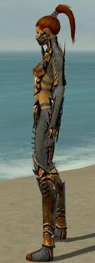 Assassin Elite Exotic Armor F gray side