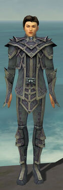 Elementalist Krytan Armor M gray front