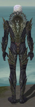 Necromancer Krytan Armor M gray back