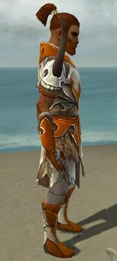 Paragon Norn Armor M dyed side