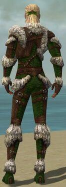 Ranger Elite Fur-Lined Armor M dyed back