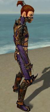 Assassin Elite Exotic Armor M dyed side