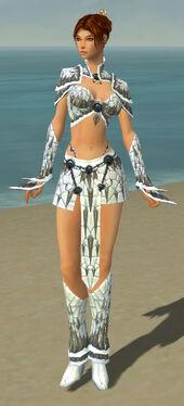 Elementalist Elite Iceforged Armor F gray front