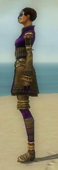 Mesmer Ancient Armor F dyed side