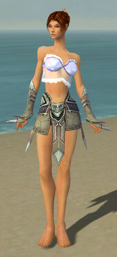 Elementalist Asuran Armor F gray arms legs front