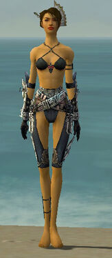 Assassin Asuran Armor F gray arms legs front