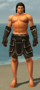 Warrior Shing Jea Armor M gray arms legs front