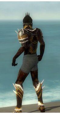 Necromancer Norn Armor M gray chest feet back