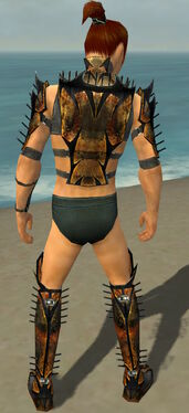 Assassin Elite Exotic Armor M gray chest feet back