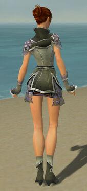 Elementalist Shing Jea Armor F gray back