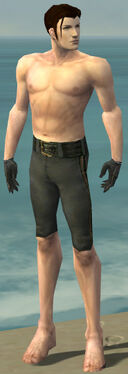 Mesmer Elite Noble Armor M gray arms legs front