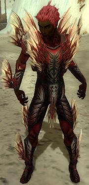 Necromancer Primeval Armor M dyed front