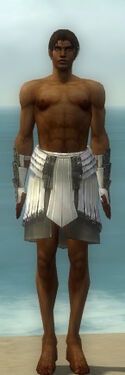 Paragon Ancient Armor M gray arms legs front