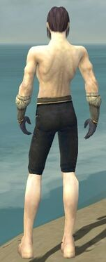 Elementalist Norn Armor M gray arms legs back