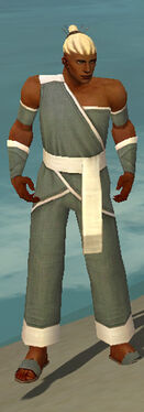 Monk Ascalon Armor M gray front