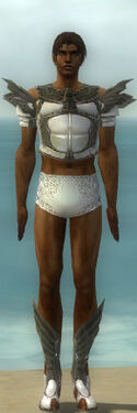 Paragon Ancient Armor M gray chest feet front