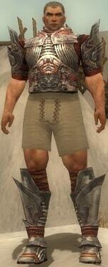 Warrior Asuran Armor M gray chest feet front