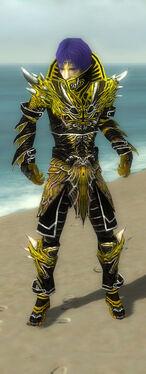 Necromancer Elite Luxon Armor M dyed front