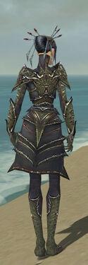 Necromancer Elite Necrotic Armor F gray back