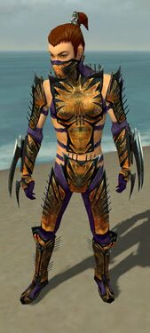 Assassin Elite Exotic Armor M dyed front