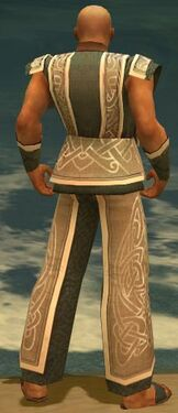 Monk Tyrian Armor M gray back