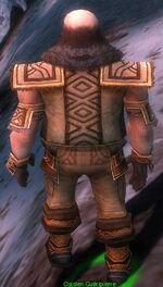 Ogden Stonehealer Armor Deldrimor Back