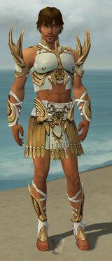 Paragon Elite Sunspear Armor M dyed front