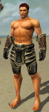 Warrior Kurzick Armor M gray arms legs front