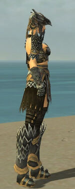 Warrior Silver Eagle Armor F dyed side alternate