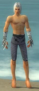 Elementalist Elite Iceforged Armor M gray arms legs front