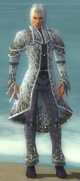 Elementalist Elite Iceforged Armor M gray front