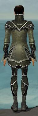 Elementalist Shing Jea Armor M gray back