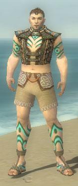 Monk Elite Luxon Armor M gray chest feet front