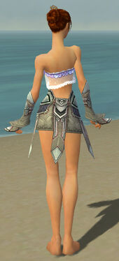 Elementalist Asuran Armor F gray arms legs back