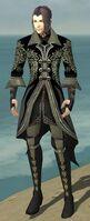 Elementalist Elite Kurzick Armor M gray front