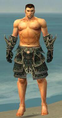 Warrior Elite Luxon Armor M gray arms legs front