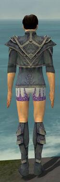 Elementalist Krytan Armor M gray chest feet back