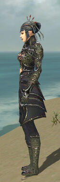 Necromancer Elite Necrotic Armor F gray side