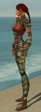 Ranger Elite Drakescale Armor F gray side alternate