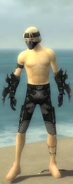 Assassin Kurzick Armor M gray arms legs front