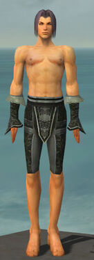 Elementalist Elite Canthan Armor M gray arms legs front