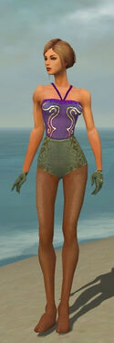 Mesmer Elite Canthan Armor F gray arms legs front