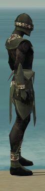 Ritualist Kurzick Armor M gray side alternate